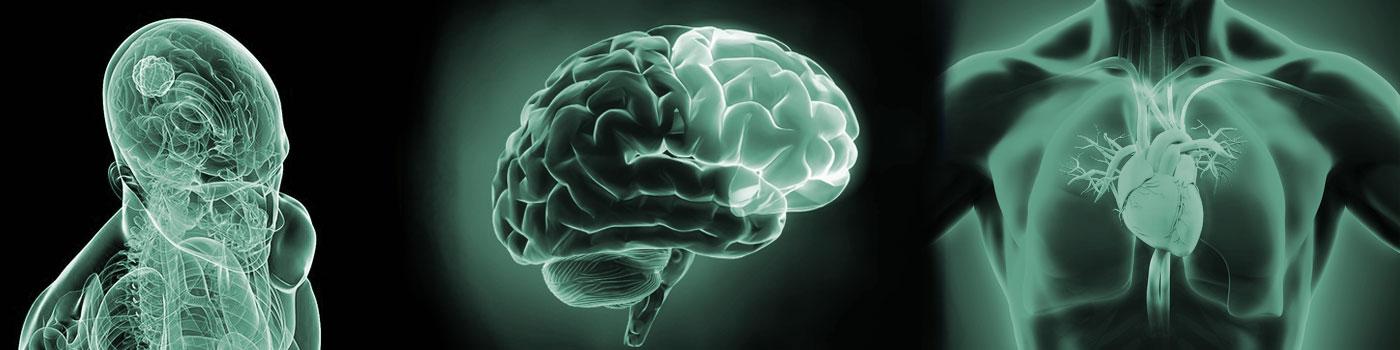 neurology_cardiology_oncology